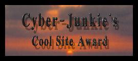cyber junkie award
